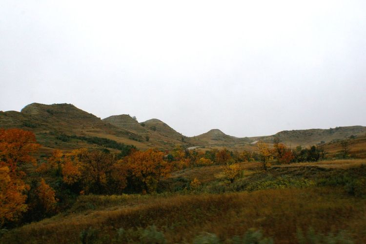 A Line of Fall Color, Theodore Roosevelt National Park Theodore Roosevelt National Park North Dakota Landscape Mountains Badlands Autumn Colors