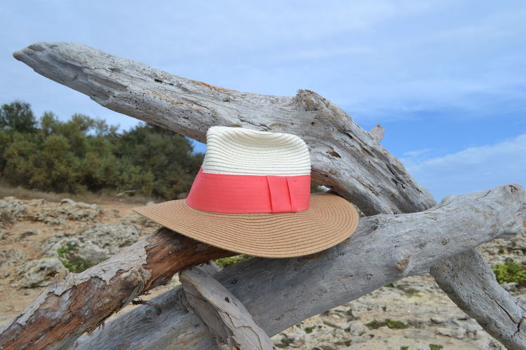 Hat Holiday Relaxing Branch Close-up Clothing Cloud - Sky Day Focus On Foreground Hat Land Low Angle View Nature No People Outdoors Plant Red Scenics Sky Summer Textured  Tranquil Scene Tree Tree Trunk Wood - Material