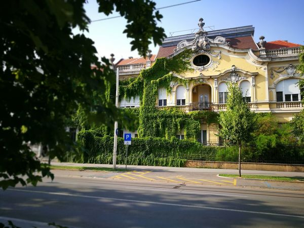 Osijek Osijek, Croatia Center Croatia Hrvatska Architecture Secession Building Building Exterior Focus On Background Blurred Foreground Leaves Huawei HuaweiP9 Oo Leica Sunny Day No Filter No Edit No Filter Needed