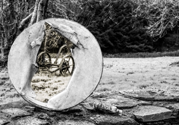 Abandoned Places Bodhran Farm Life Farm Machinery Ireland Musical Instruments Still Life Still Life Photography