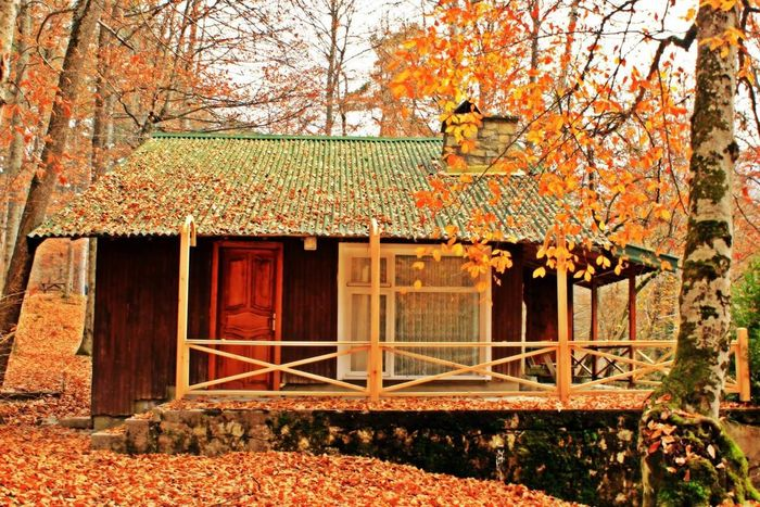 Camping Turkey Bolu  Yedigoller