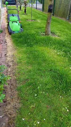 Gardening Cutting The Lawn Grass Green Color Nature Day Outdoors High Angle View No People Before &after Garden Photography Garden Work