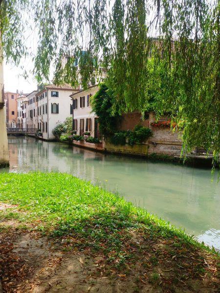 Pausa Pranzo Passeggiando Per Le Vie Del Centro Treviso Trevisocity Bella Giornata Colori Sole Oggisole Ombra Relax