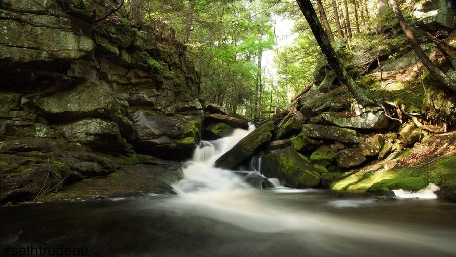Beautiful Cascades in Massachusetts Forest Motion Scenics Beauty In Nature Tree Trunk Nature Water Waterfall Tranquil Scene Rock Formation Environment Moss Flowing Growth Non-urban Scene Branch Tranquility Green Color Outdoors Sethtrudeau Photography Cascades Cascade Waterfalls Waterfall