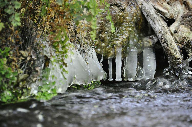 My Winter Favorites Frozen Frozen Lake Frozen Nature Frozen Water Frozen Leaf Frozenlake Frozenlove Frozen Photography FrozenDrops Frozen Flowers Frozenwater Frozen Waterfall