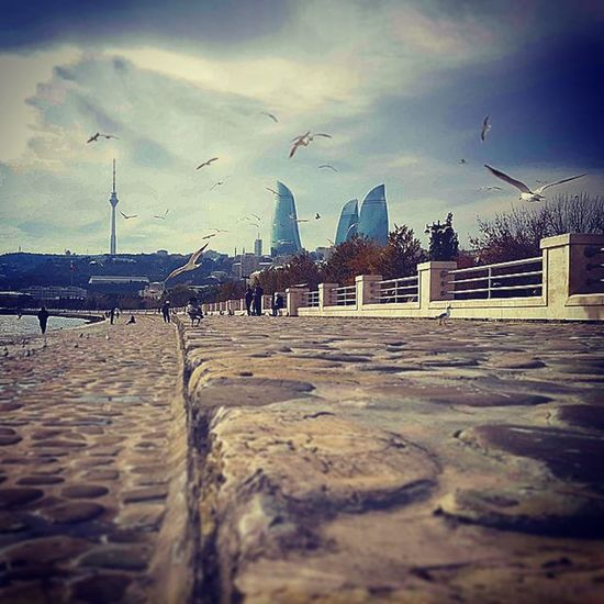 Baku2015 Boulevard Bulvar Birds Flametowers Edited Withlove