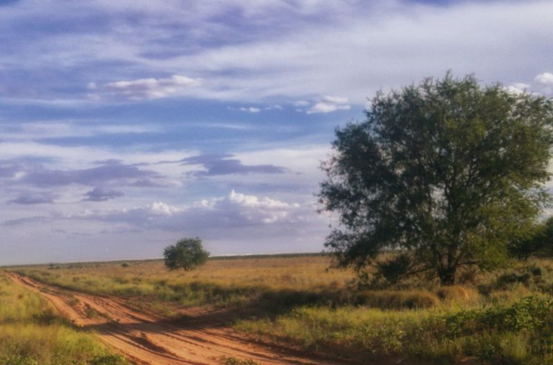 Red Dirt Roads of TexasRed Dirt Road Plains Texas Clouds Fine Art Photography Photoart This Week On Eyeem Lg G4 Photography Eye4photography  West Texas West Texas Skies Clouds And Sky Clouds Collection Cloudscape Oilfiled Open Edit Oilfield