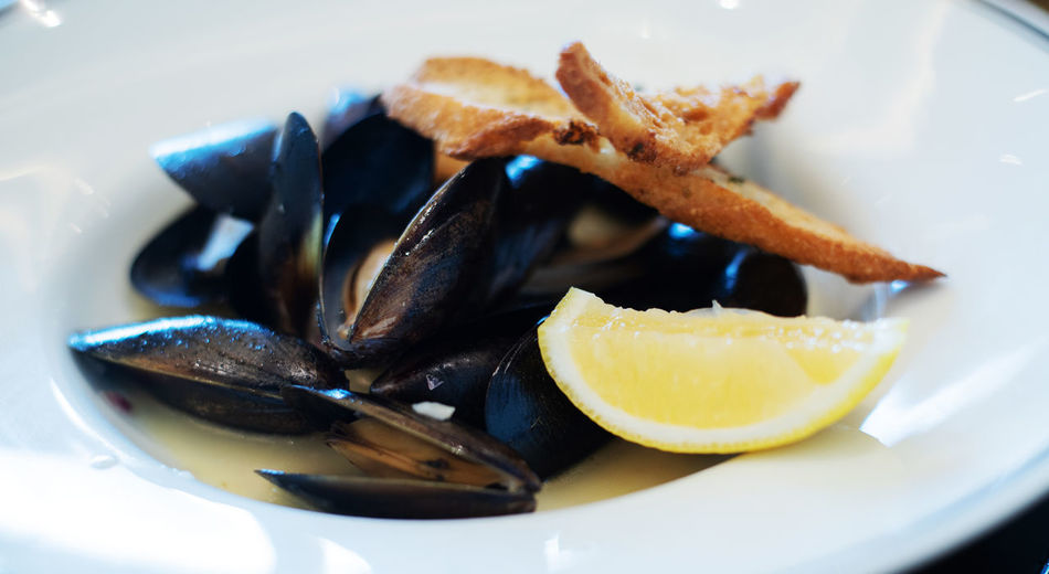 Mussels Seafood Mussel Wine Food Steamed  Parsley Background Dish Sauce Gourmet Sea Fresh Delicious Cooked White Meal Black Healthy Lemon French SHELLFISH  Cuisine Boiled View Top Clam Dark Pot Eating Mollusk Copper  Stone Bowl Blue Pan Dinner Shell Table Clams