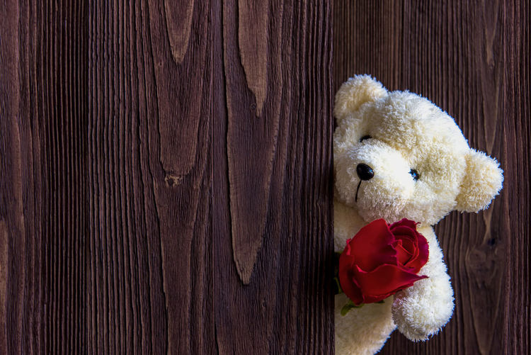 High angle view of stuffed toy on wood
