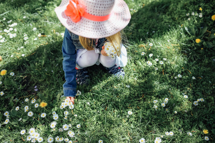 Girl with straw hat picking daisy flowers Plant Hat One Person Grass Day Nature Child Flowering Plant Flower Leisure Activity Casual Clothing Green Color Growth Clothing Land Real People Childhood Outdoors Innocence Spring Springtime Daisy Flower Picking Flowers  Freshness