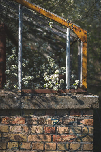 Close-up of rusty metal wall
