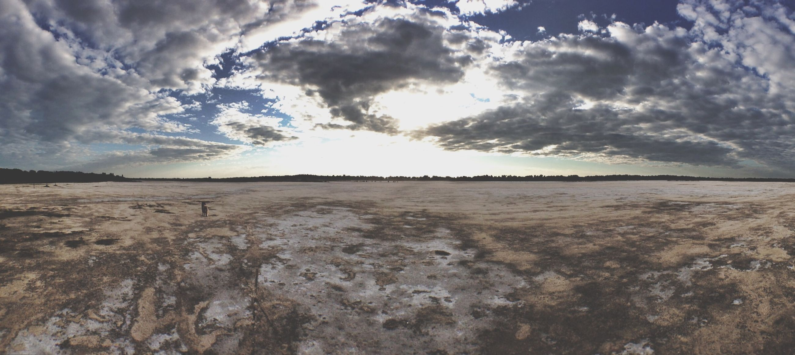 sky, tranquility, cloud - sky, nature, tranquil scene, scenics, low angle view, beauty in nature, textured, cloudy, cloud, outdoors, rough, day, no people, idyllic, non-urban scene, weather, rock - object, remote