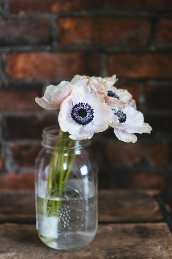 Transparent Wood - Material Focus On Foreground Beauty In Nature Vulnerability  Fragility Nature Flower Head Container Glass - Material Close-up No People Vase Indoors  Freshness White Color Flowering Plant Plant Table Flower Arrangement Flower