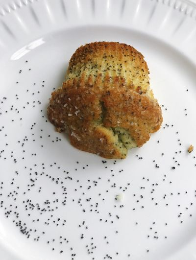 Lemon Poppyseed Muffin on White Plate Bakery Items Baked Goods Breakfast Food White Plate Muffin On Plate Muffin Lemon Poppyseed Muffin Lemon Poppyseed Food And Drink Food Plate Ready-to-eat Indoors  Freshness Serving Size Indulgence Close-up No People