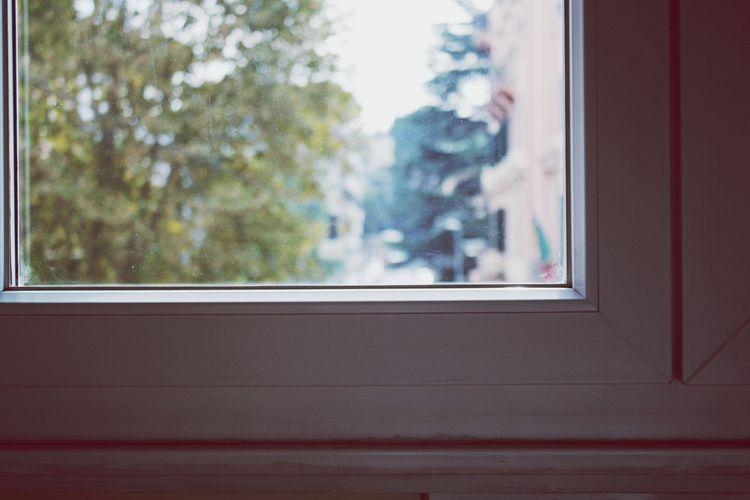 Close-up of closed window