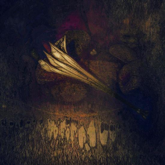 Night Realm- Contemplation of Day Dark Dark Corner Darkness And Light Datura Digital Art Illustration Insomnia Metaphor Moonflower Old Renaissance Still Life Unease Warm Colors Fine Art Photography