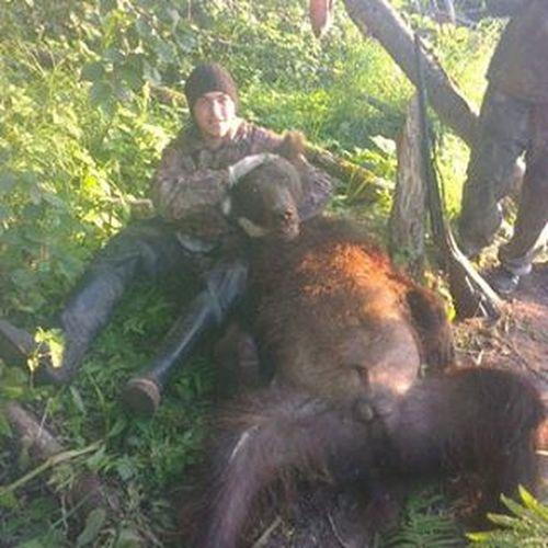 Фото из прошлого. Когда мне было лет 16-17 мы улетали на вертушке на рыбалочку там же и охотились.камчатка охота медведь