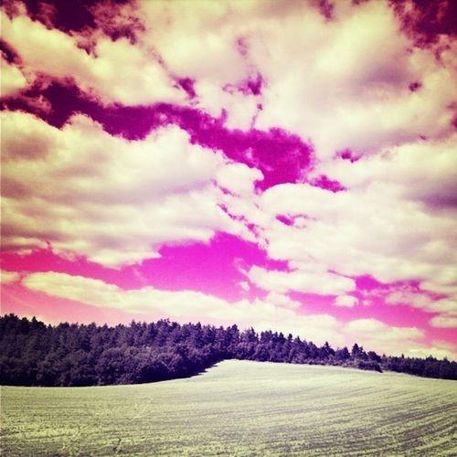 Sky Pink Itsapinkworld