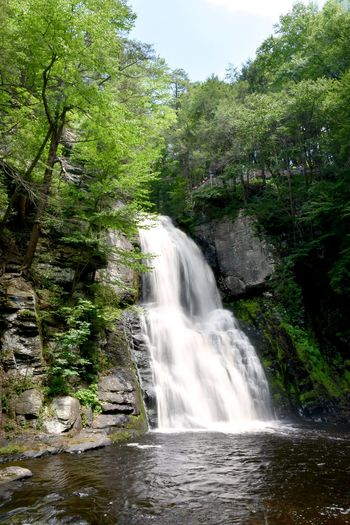 Bushkill Falls North America Pennsylvania Nature Pennsylvania Outdoors Beauty In Nature Blurred Motion Forest Motion Nature Outdoors Tranquility Water Waterfall