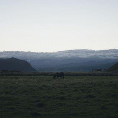 silence everywhere Iceland