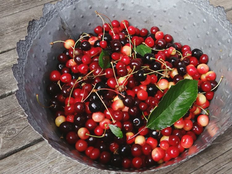 Picked some cherries Summertime Favorites Metal Flower Pot On My Porch Natures Candy Preparation  Berries Yummy Candy Red Berries Cherries Delicious Freshness Berry Fruit Picking Berries in Sweden