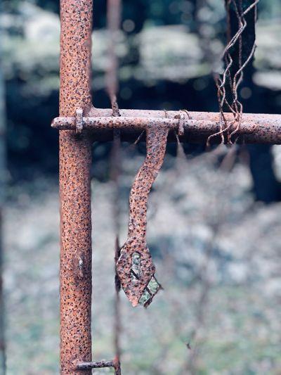 Close-Up Of Rusty Metallic Latch