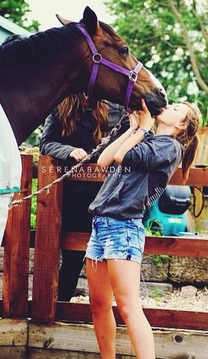 Horse Friendship Perfect Love