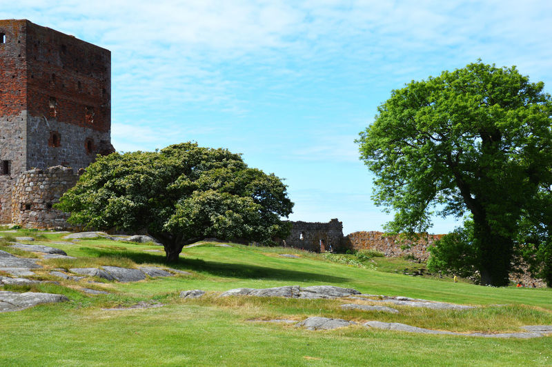Bornholm Denmark Architecture Beauty In Nature Building Building Exterior Built Structure Day Grass Green Color Growth Hammershus Scandinaviancastle Ruins Bornholm Denmark History Land Landscape Nature No People Outdoors Plant Sky The Past Tree Water