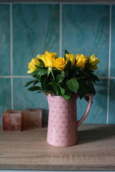 Be gentle Eye4photography  EyeEm Gallery EyeEm Best Shots Pink Rose - Flower Roses Plant Flowering Plant Flower Freshness Vase Beauty In Nature Indoors  No People Fragility Yellow Vulnerability  Still Life