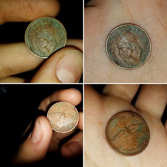 So much coolness lmao Human Hand Close-up Indoors  Loveit Mylife Photooftheday Cool Old Pennies Penny Historic History Goodvibes Pretty Different Perspective Photography Beautiful Smile Queen Elizabeth  Dove Bird Change Coin Oldcoin Holding