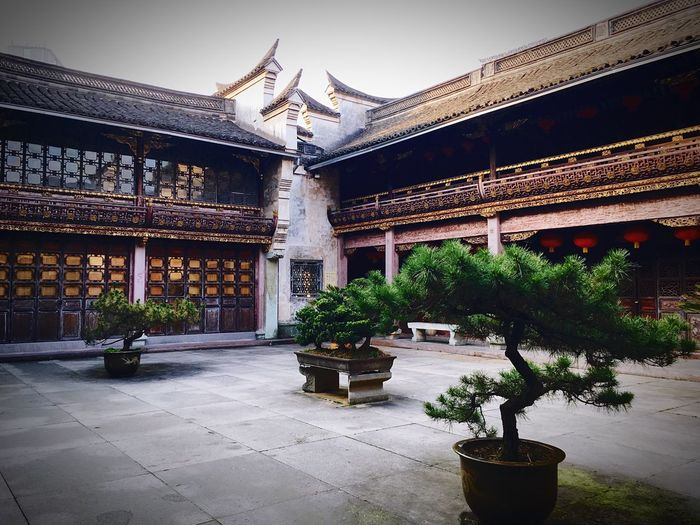 Architecture Building Exterior Built Structure Cultures Ancient Landscape_Collection Museum History Life EyeEmNewHere Ancient Culture Calm House No People 天一阁 China Chinatown Chinese Photography