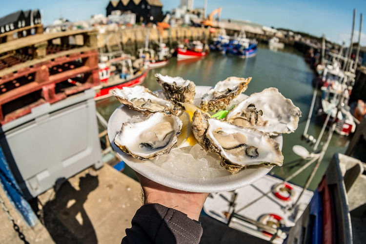 Cropped image of hand holding oysters at harbor