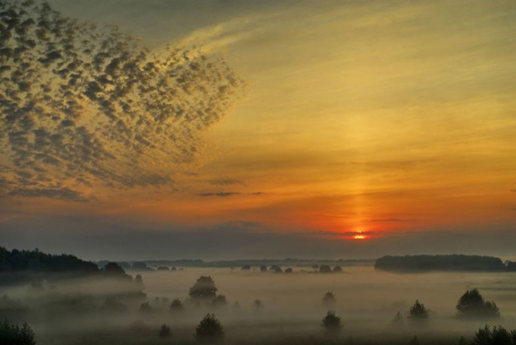 Russia Природа Nature рыльск Landscape пейзаж Sunrise