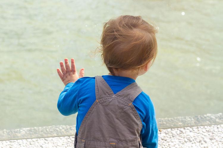 Rear view of boy in water