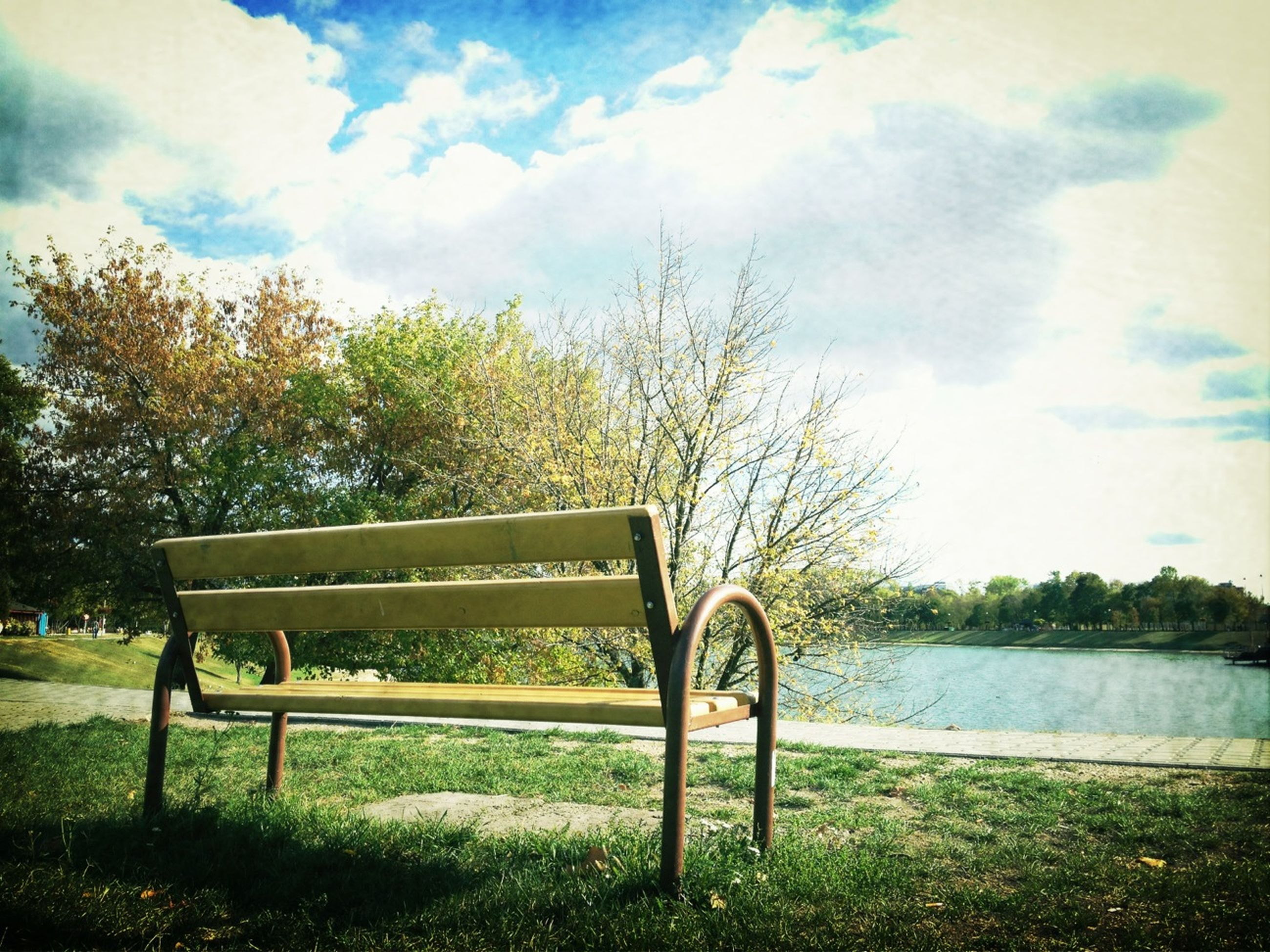 tree, sky, tranquility, water, tranquil scene, grass, lake, bench, empty, nature, cloud - sky, absence, scenics, cloud, beauty in nature, growth, park bench, day, lakeshore, field
