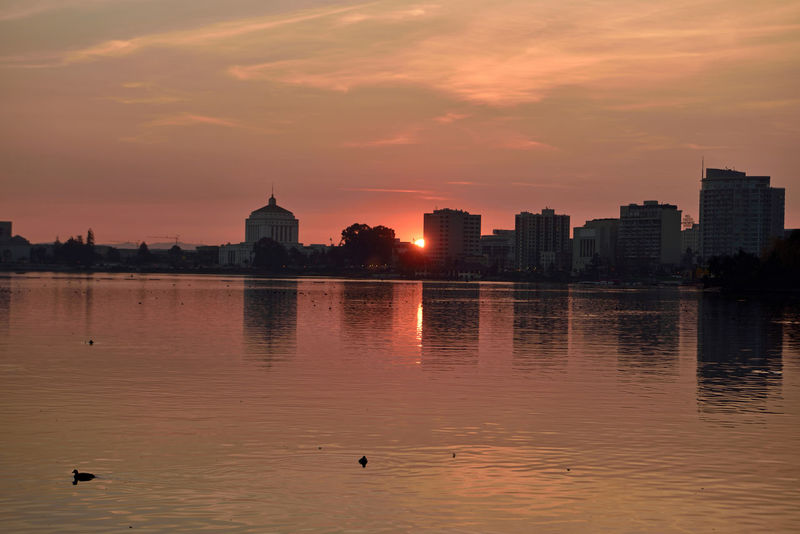 Sunset At Lake Merritt 4 Lake Merritt Oakland, CA Sunset Sunset_collection Sunset Silhouettes Sundown Sunset_lovers Sun's Glow Cityscape Superior Court House Reflections Reflected Glory Reflections In The Water Urban Skyline Urban Photography Office Buildings Construction Cranes Sun Over The Horizon Waterfowl Golden Hour Scenic