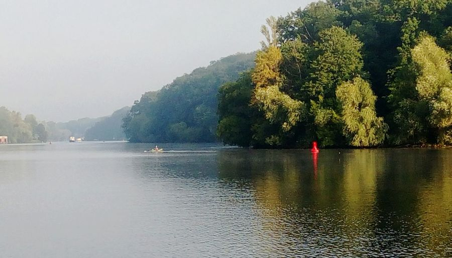 Water Tree One Person Lake Nature Reflection Fog Tranquil Scene Riverside Focus On Background Tranquility Morning Light Foggy Morning Nautical Vessel Outdoors Adults Only Adult People Beauty In Nature Scenics Men Day Sky