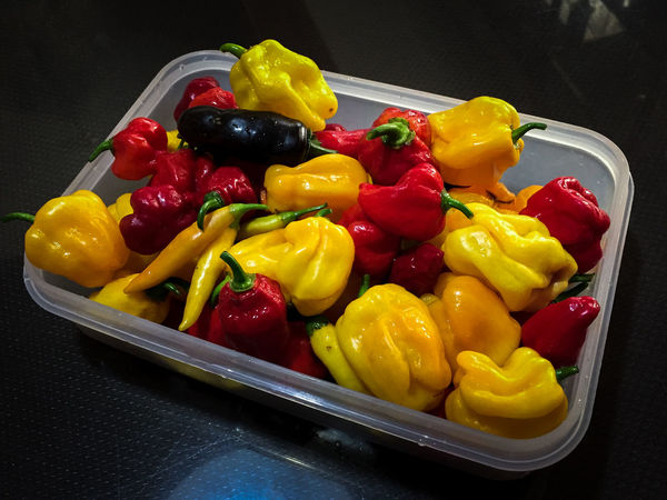 Fresh Peppers Cooking Hot Red Relaxing Cayenne Close Up Close-up Day Delicious Food Food And Drink Freshness Habanero Healthy Eating Ingredient Jalapeno Multi Colored Pepper Pepper - Vegetable Red Bell Pepper Still Life Variation Vegetable Yellow Yellow Bell Pepper