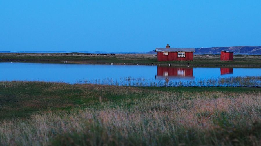 Gjellerodde Gjeller Odde Red Red House Red Cottage Blue Blue Sky Blue Water Ocean Grass Denmark Denmark 🇩🇰 Jutland Water Reflections Landscape Showcase August House Cottage Building Olympus OM-D E-M5 Mk.II Voightlander Nokton 25mm F1:0,95
