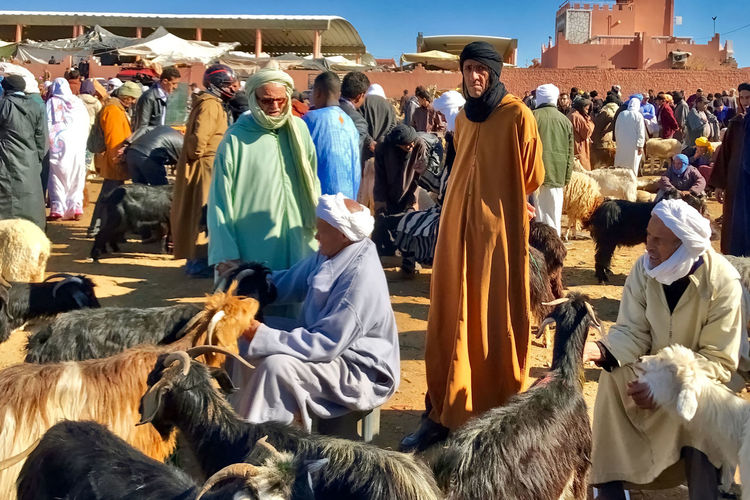 At the market at Guelmim in Morocco. Buldings Day Goats Guelmim Kaftans Large Group Of People Market Men Morocco Outdoors Sheeps Turbans