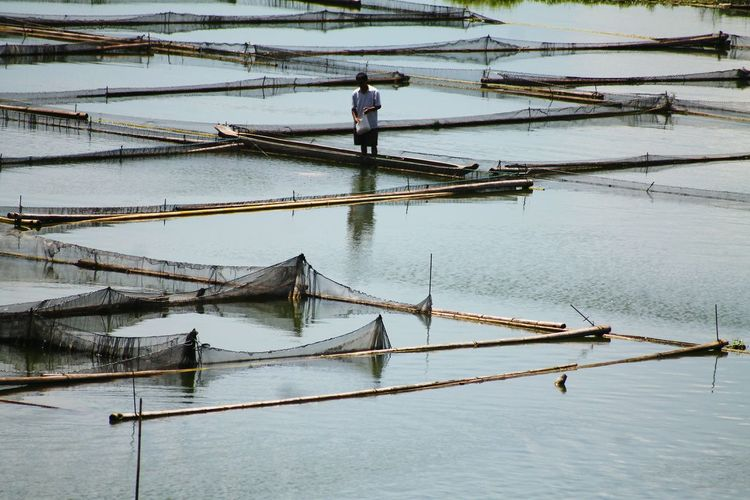 Lake Sebu Philippines Water Day Nature Fish Pond Life On The Lake Lake Sebu Fish Culture People Lines, Shapes And Curves Minimalism People At Work Working People Social Issues Solitary Moments Solitary Figure Fisheries Beautifully Organized