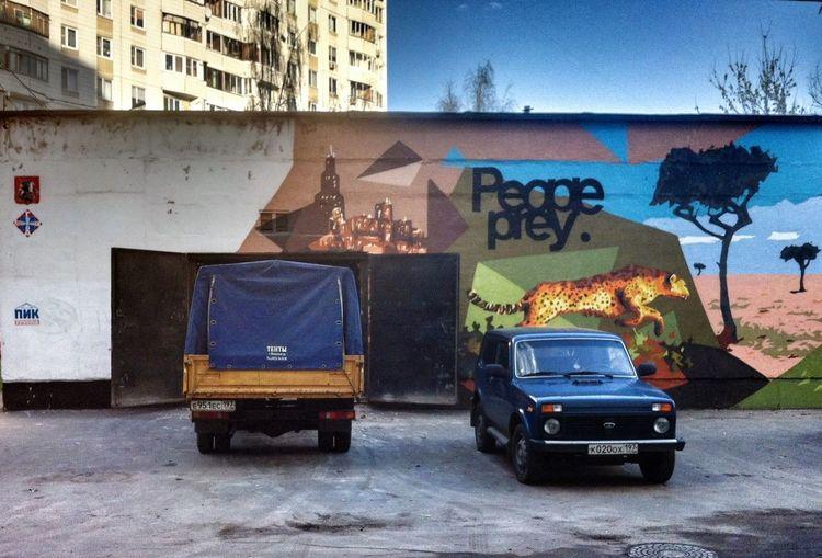 Graffiti Cars Leopard Streetart