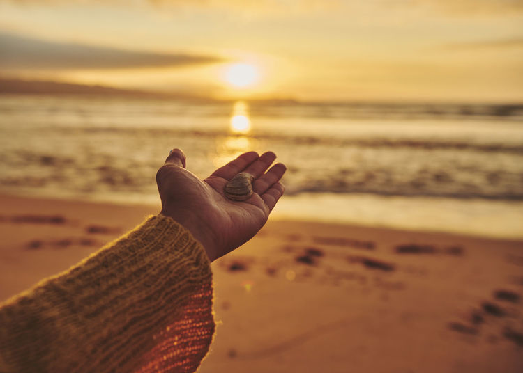 Close-up of female hand holding a shell at beach against sky during sunset