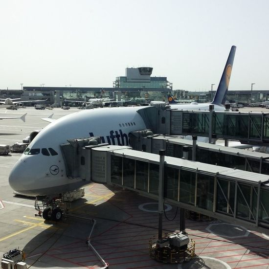 We are flying with this plane. Lufthansa Airbus A380