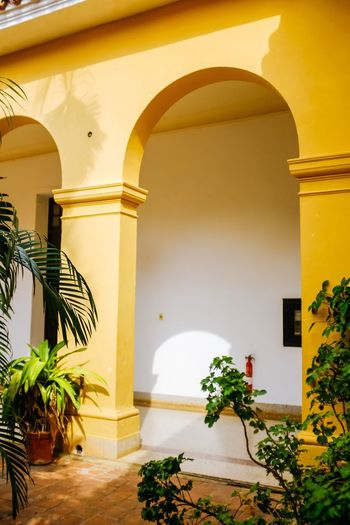 Cuba Cuba Architecture Built Structure Arch Yellow Plant No People Building Exterior Day Nature Indoors  Growth