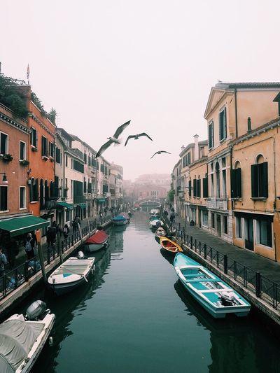 Venezia Venice Italy Celestalisblue Celestalis Italia Italy