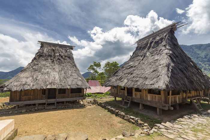 Two traditional houses in the Wologai village near Kelimutu in East Nusa Tenggara, Indonesia. Coffee Houses INDONESIA Moni Rice Tourist Travel Tree Art Attraction Authentic Culture Destination East Nusa Tenggara Ethnic Hard Wood House Kelimutu Landmark Sculpture Tourism Traditonal Tribe Village Wologai