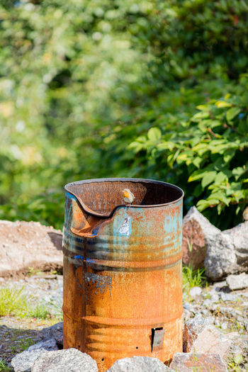Bird Countryside Day Green Color Nature No People Oil Barrel Outdoors Selective Focus Summer Sweden