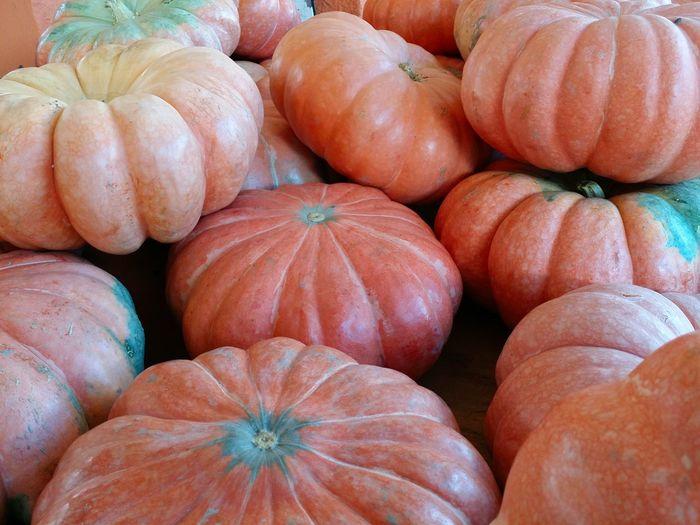 Pumpkin Food Colors Of Nature Market