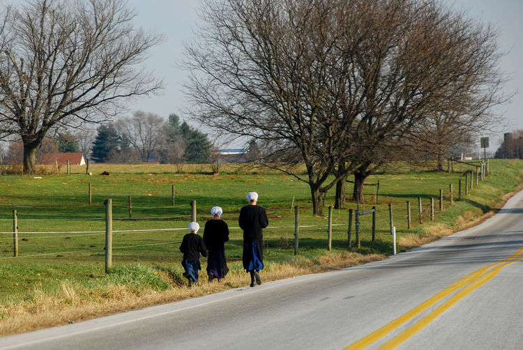 Rear view of people walking on road amidst bare trees